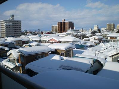 2010yuki01.jpg